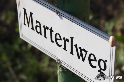 Bockfließer Marterlweg (30.08.2016)