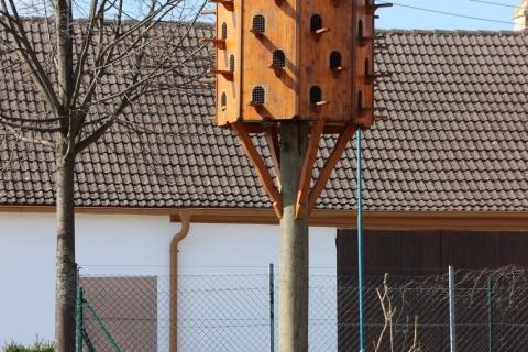 Herrenbaumgarten - Das verruckte Dorf