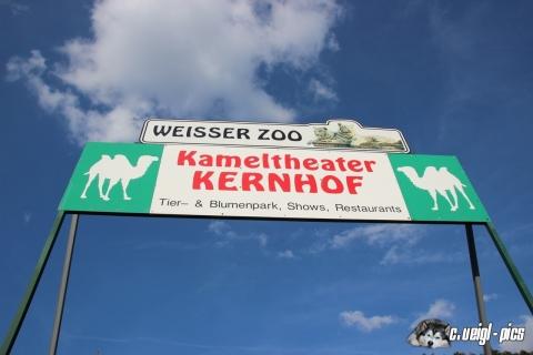 Kameltheater Kernhof mit weißem Zoo