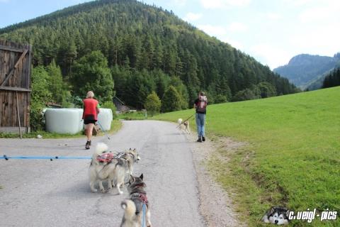 Unterberg-Hiking ab Grieshof
