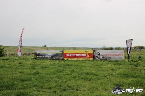 3. Großengersdorfer Hunde-Wandermarathon 2015