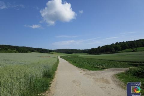 Füllersdorfer Waldwegrunde (02.06.2018)