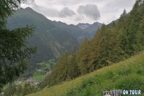 Wanderung zur Stabanthütte im Virgental (26.07.2020)